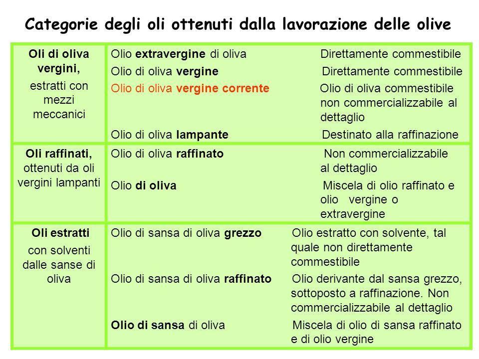 Categorie degli oli ottenuti dalla lavorazione delle olive