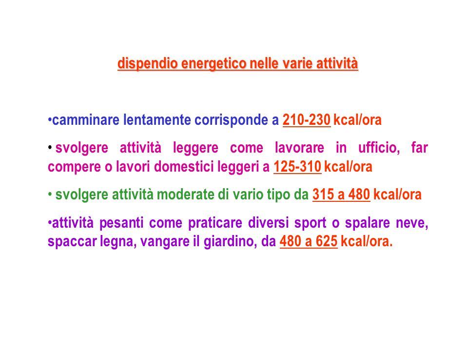 dispendio energetico nelle varie attività
