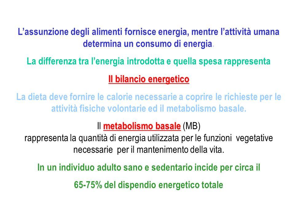 La differenza tra l'energia introdotta e quella spesa rappresenta