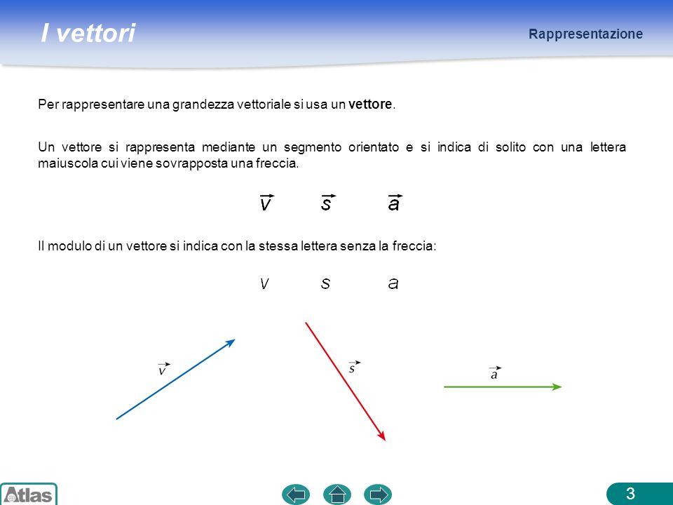Rappresentazione Per rappresentare una grandezza vettoriale si usa un vettore.