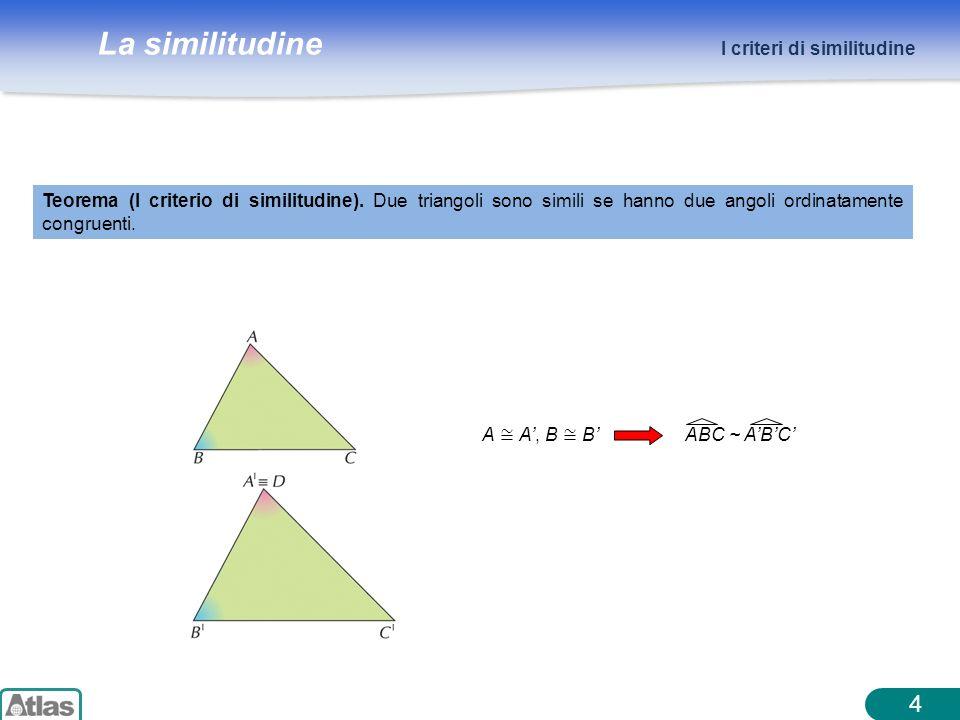 4 I criteri di similitudine