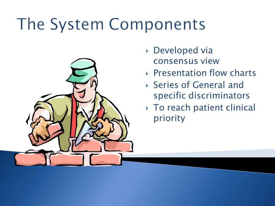 The System Components Developed via consensus view