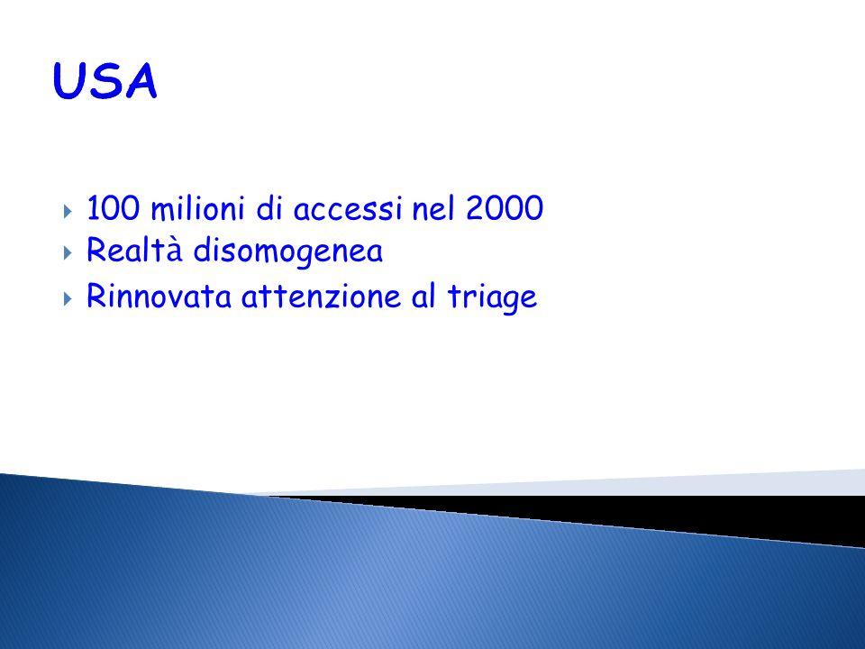 USA 100 milioni di accessi nel 2000 Realtà disomogenea