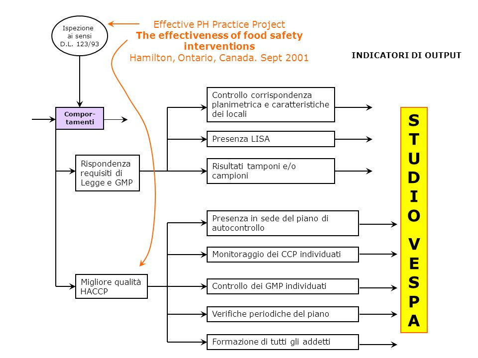 Ispezioneai sensi. D.L. 123/93. Effective PH Practice Project The effectiveness of food safety interventions Hamilton, Ontario, Canada. Sept 2001.