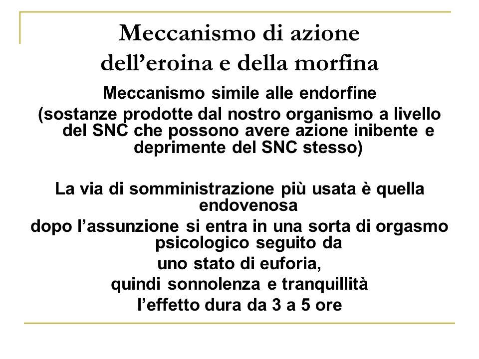 Meccanismo di azione dell'eroina e della morfina
