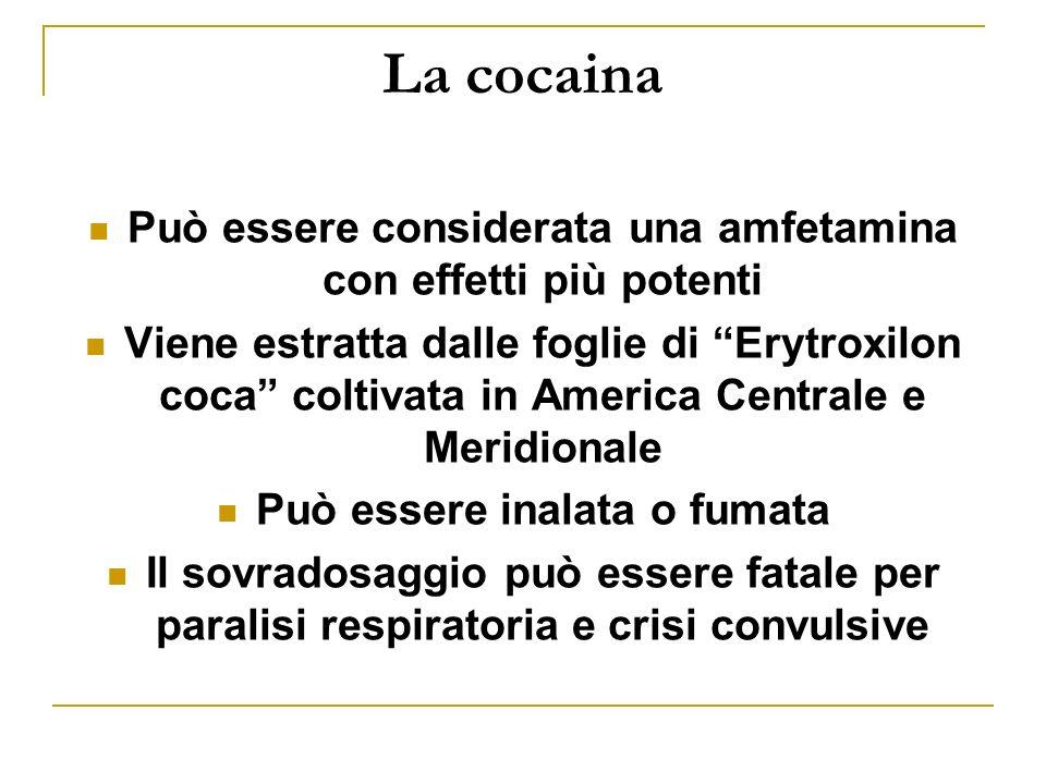 La cocaina Può essere considerata una amfetamina con effetti più potenti.