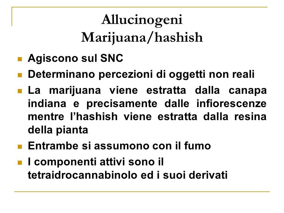 Allucinogeni Marijuana/hashish