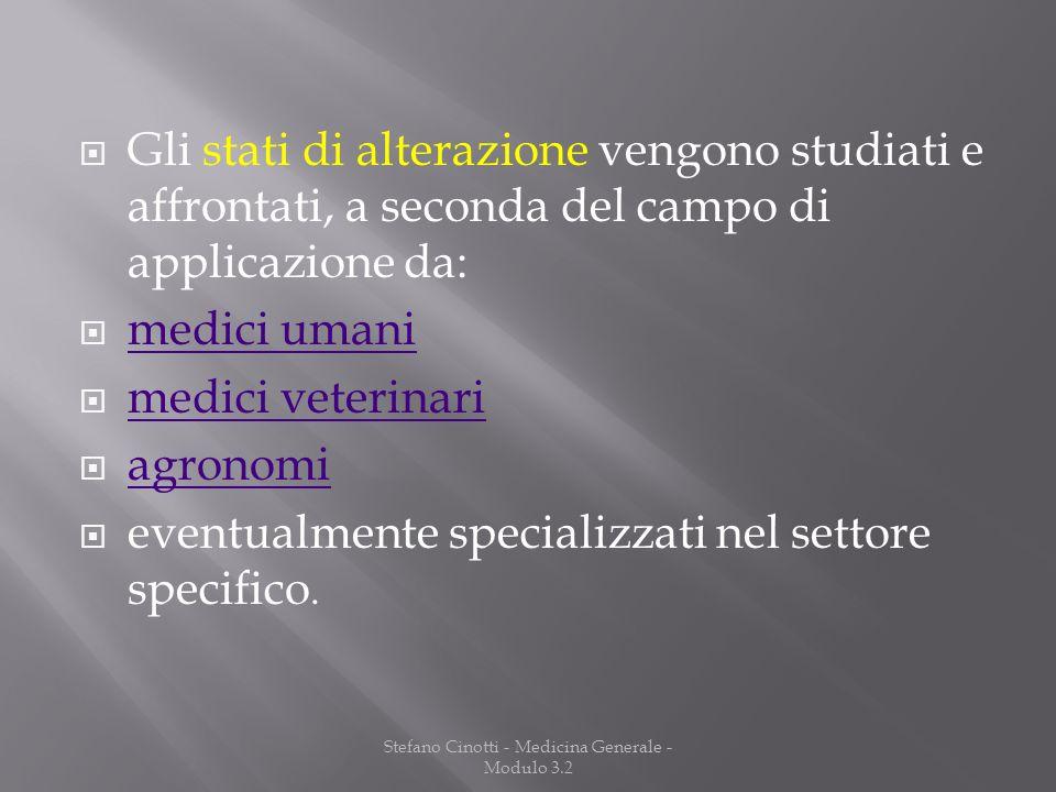 Stefano Cinotti - Medicina Generale - Modulo 3.2
