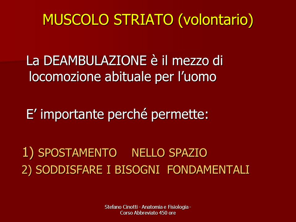 MUSCOLO STRIATO (volontario)