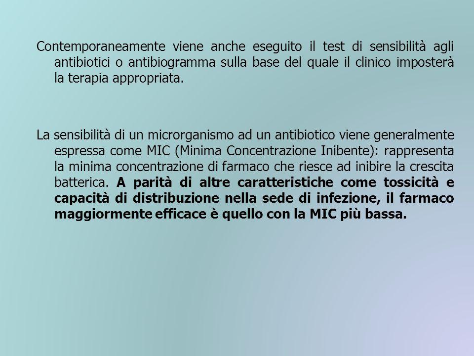 Contemporaneamente viene anche eseguito il test di sensibilità agli antibiotici o antibiogramma sulla base del quale il clinico imposterà la terapia appropriata.