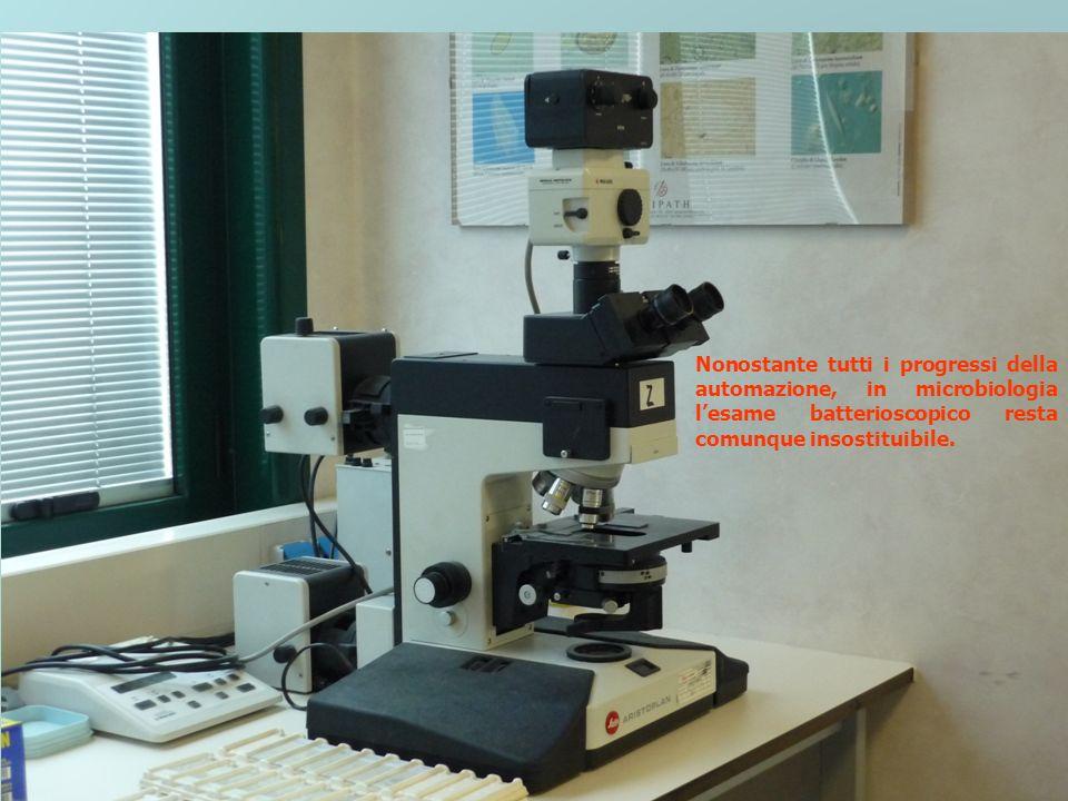 Nonostante tutti i progressi della automazione, in microbiologia l'esame batterioscopico resta comunque insostituibile.