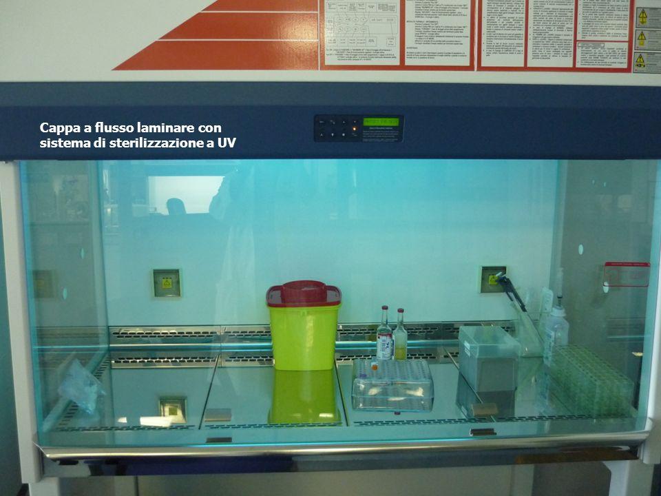 Cappa a flusso laminare con sistema di sterilizzazione a UV