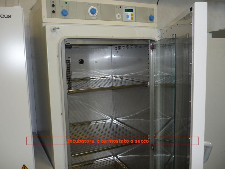 Incubatore o termostato a secco
