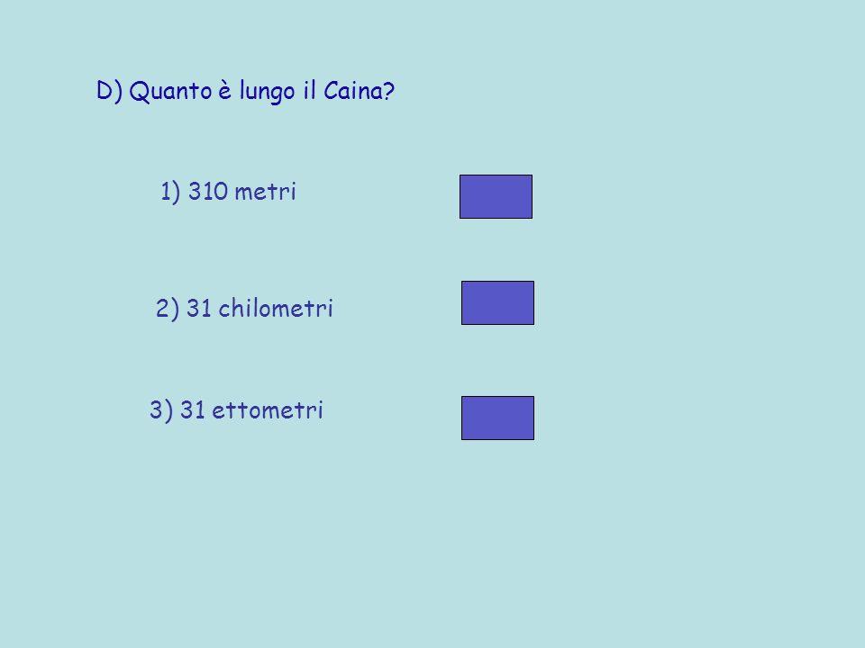 D) Quanto è lungo il Caina