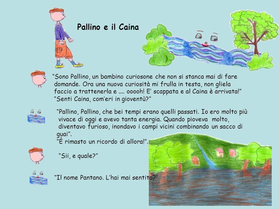 Pallino e il Caina Sono Pallino, un bambino curiosone che non si stanca mai di fare.