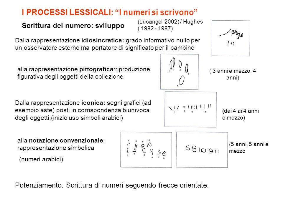 I PROCESSI LESSICALI: I numeri si scrivono