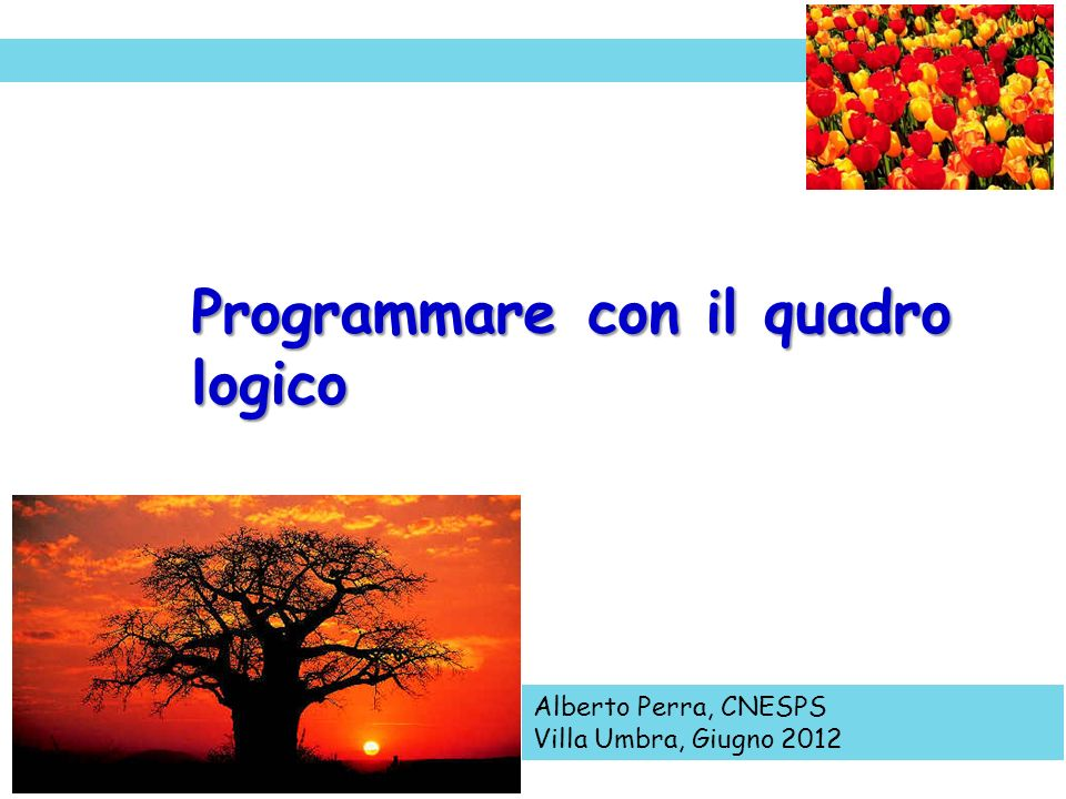 Programmare con il quadro logico