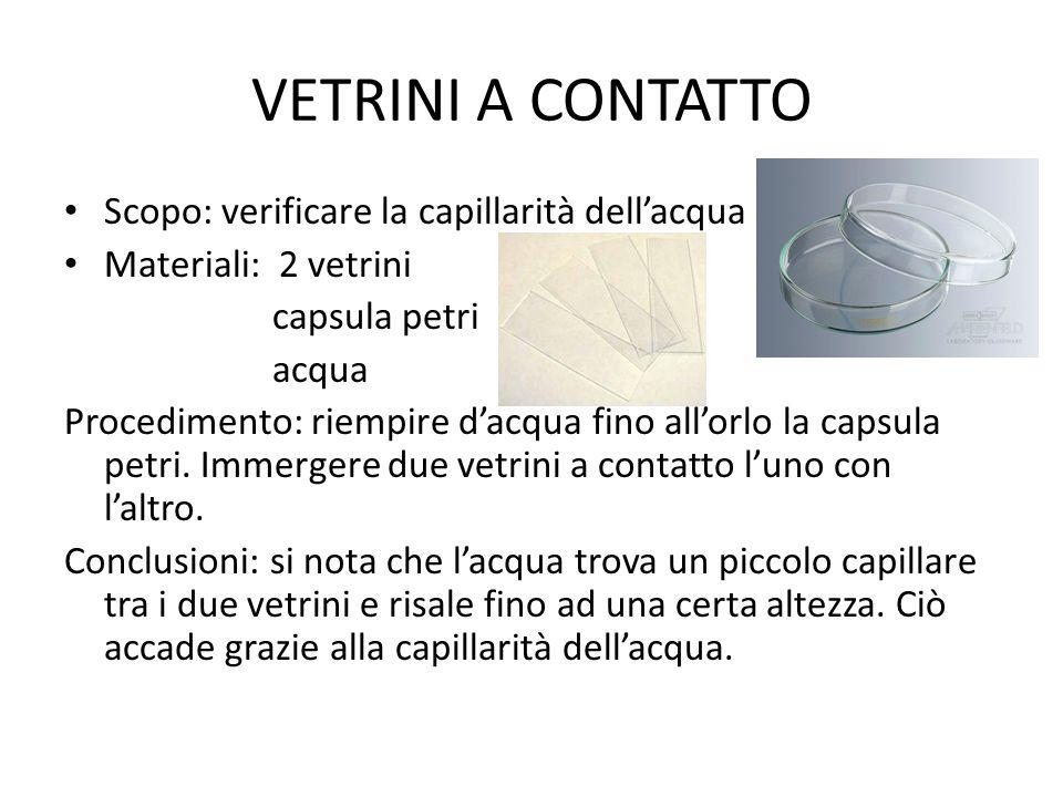 VETRINI A CONTATTO Scopo: verificare la capillarità dell'acqua