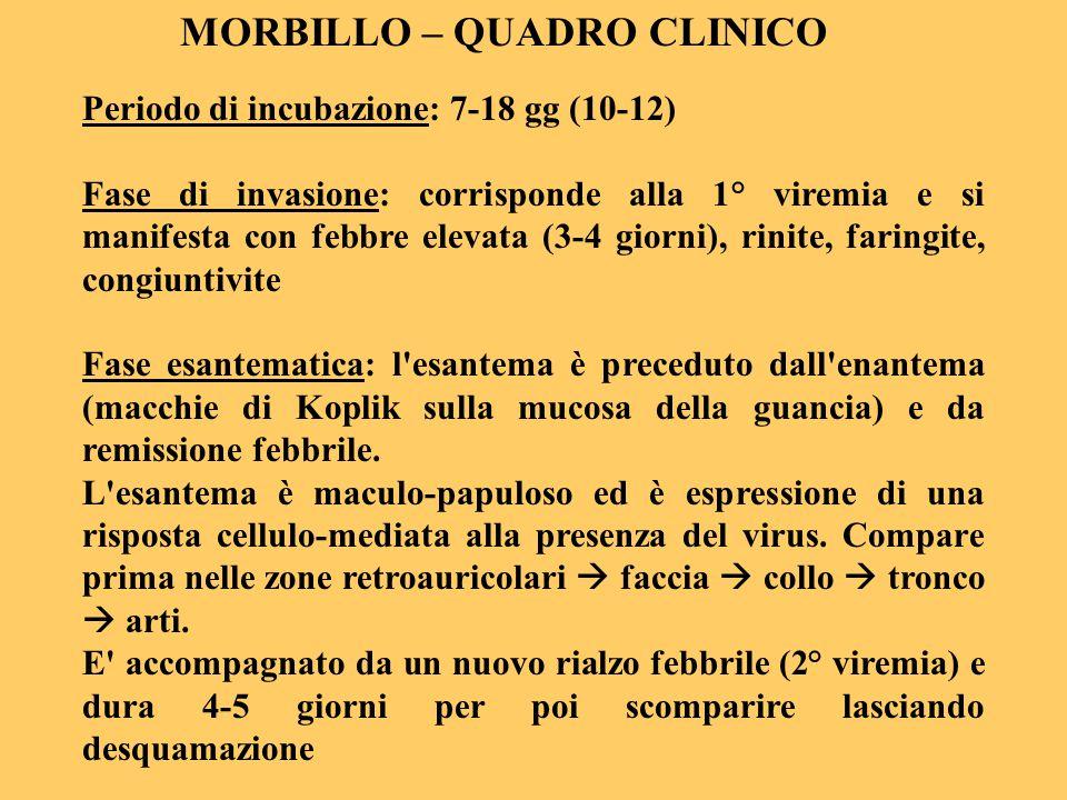MORBILLO – QUADRO CLINICO