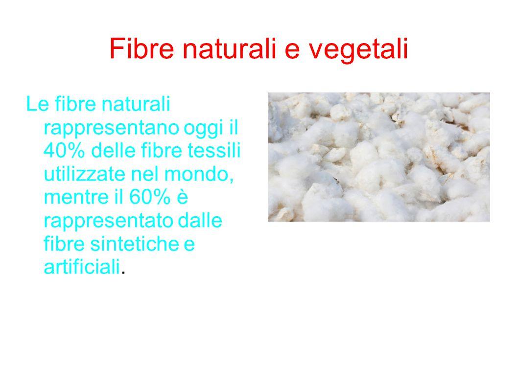 Fibre naturali e vegetali