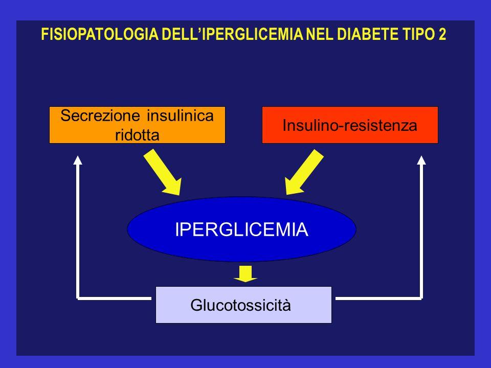 FISIOPATOLOGIA DELL'IPERGLICEMIA NEL DIABETE TIPO 2