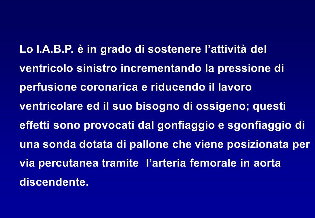 Lo I.A.B.P.