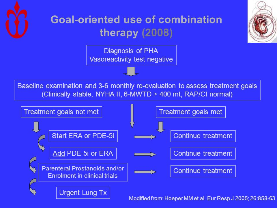 Goal-oriented use of combination therapy (2008)