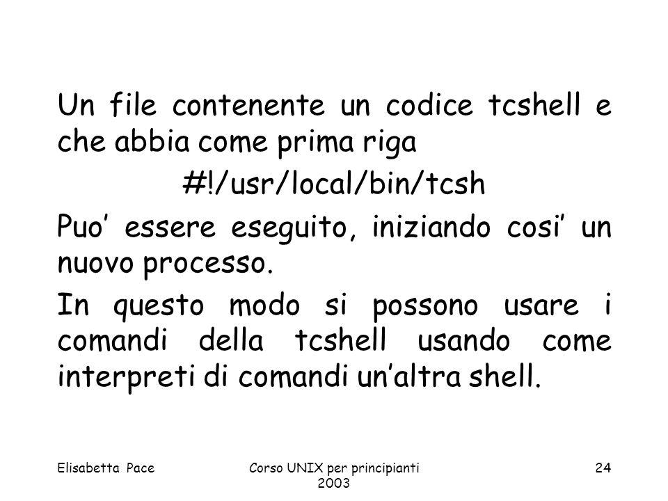 Un file contenente un codice tcshell e che abbia come prima riga