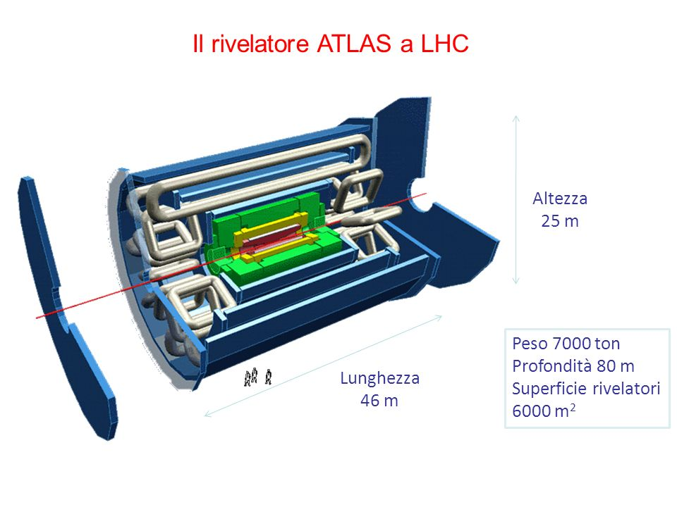 Il rivelatore ATLAS a LHC