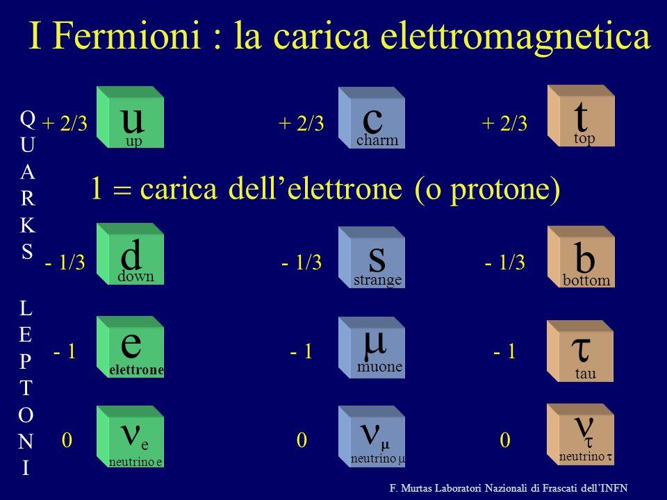 I Fermioni : la carica elettromagnetica