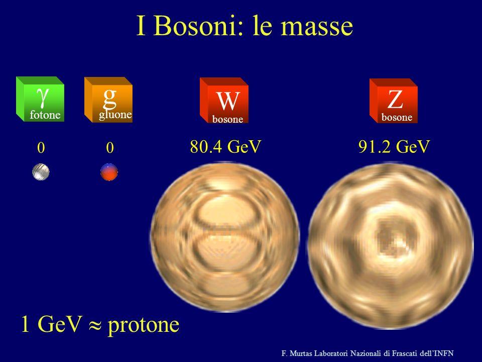 I Bosoni: le masse g g Z W 1 GeV » protone 80.4 GeV 91.2 GeV fotone