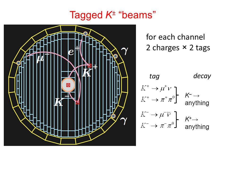 Tagged K± beams for each channel 2 charges × 2 tags tag decay