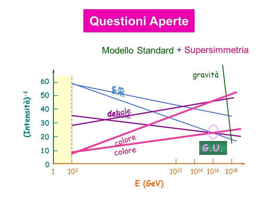 Questioni Aperte Modello Standard + Supersimmetria G.U. gravità e.m.