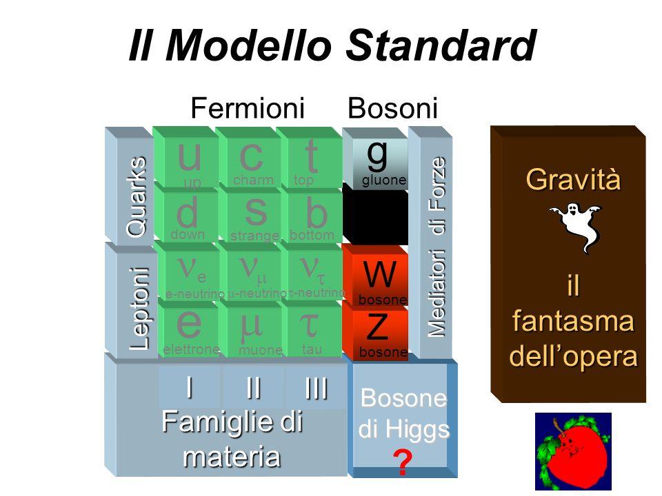 e u s c t Il Modello Standard d b m ne n n g g W Z Fermioni Bosoni I