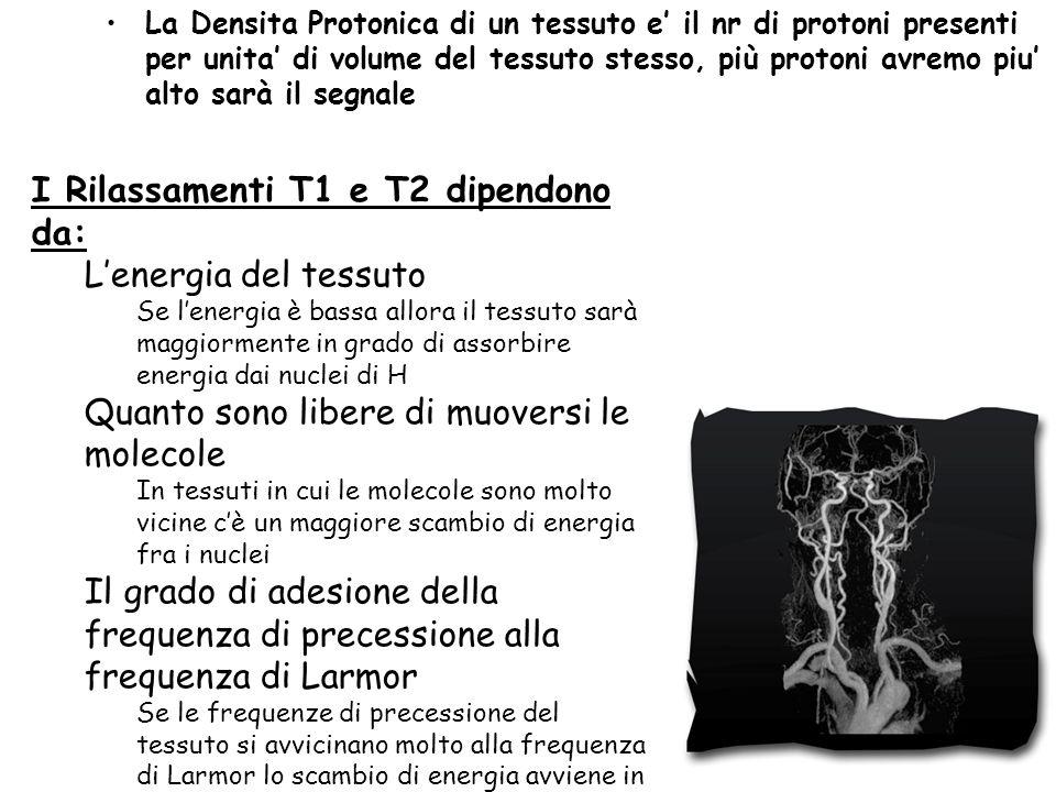 I Rilassamenti T1 e T2 dipendono da: L'energia del tessuto