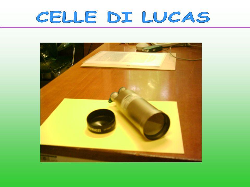 CELLE DI LUCAS