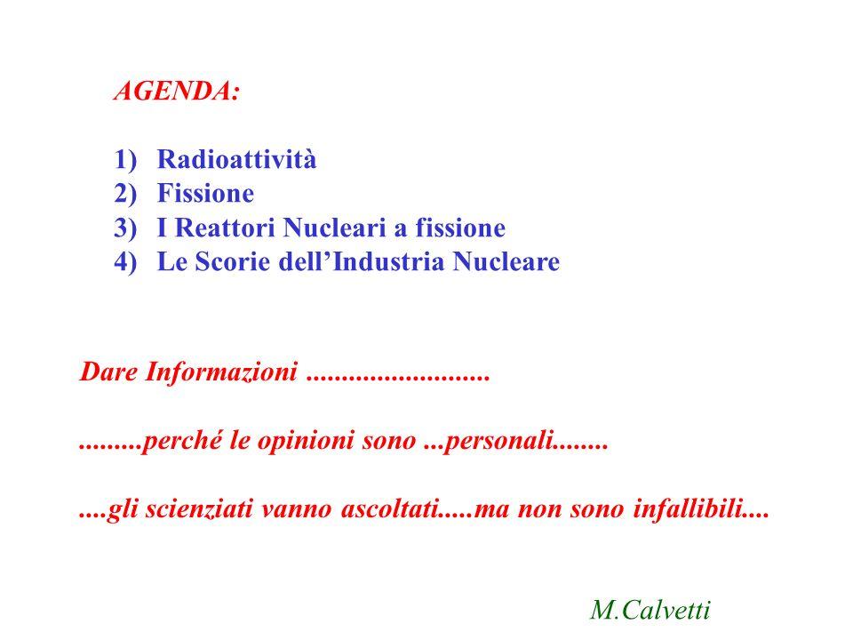AGENDA: Radioattività. Fissione. I Reattori Nucleari a fissione. Le Scorie dell'Industria Nucleare.
