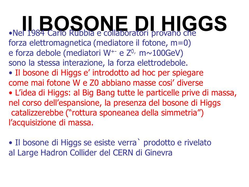 Il BOSONE DI HIGGS Nel 1984 Carlo Rubbia e collaboratori provano che