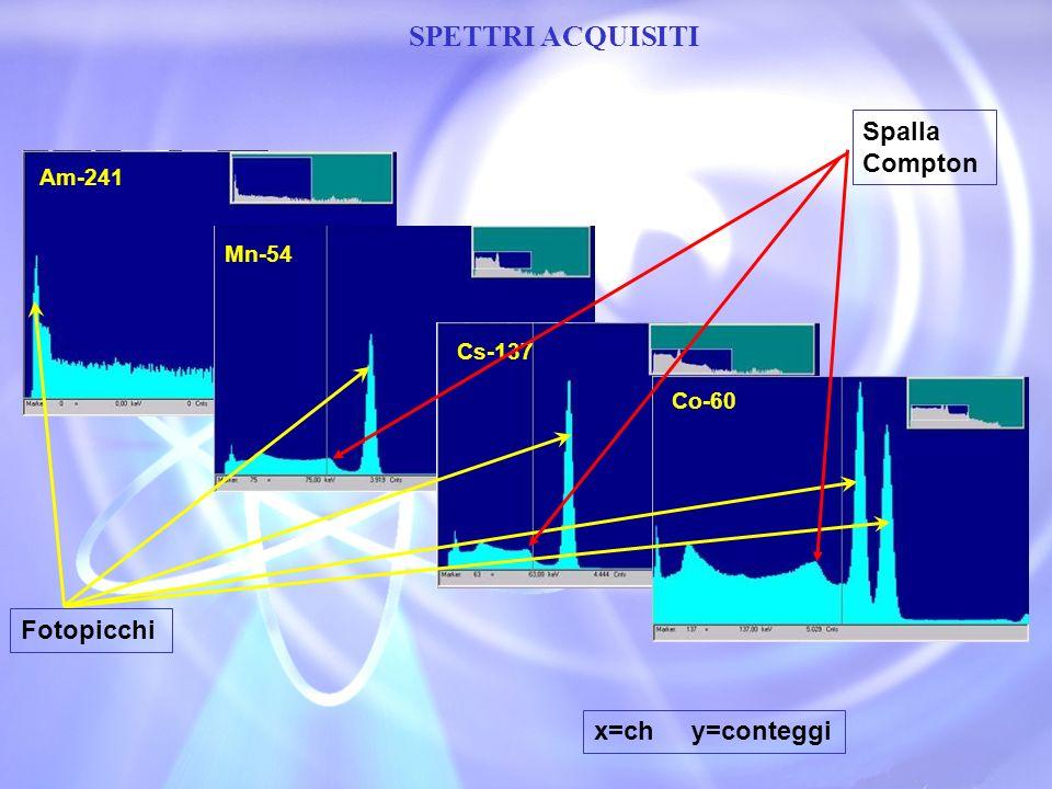 SPETTRI ACQUISITI Spalla Compton Fotopicchi x=ch y=conteggi Am-241