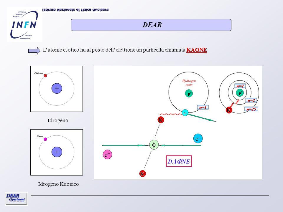 DEAR L'atomo esotico ha al posto dell'elettrone un particella chiamata KAONE.