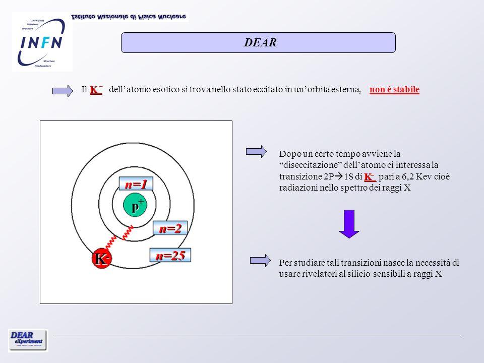 DEAR_. Il K dell'atomo esotico si trova nello stato eccitato in un'orbita esterna, non è stabile.