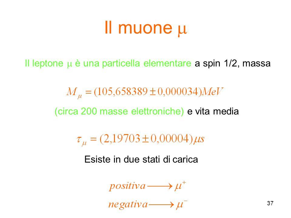 Il muone m Il leptone m è una particella elementare a spin 1/2, massa
