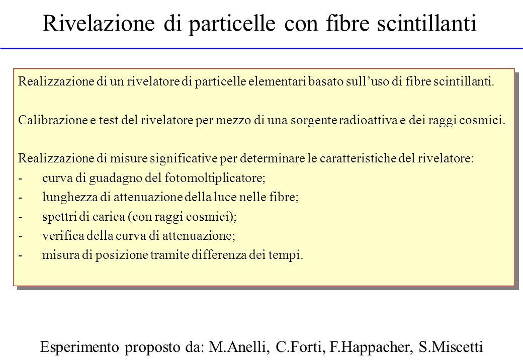 Rivelazione di particelle con fibre scintillanti