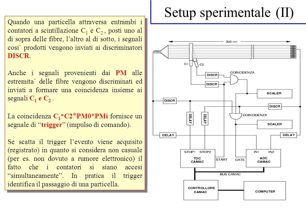 Setup sperimentale (II)