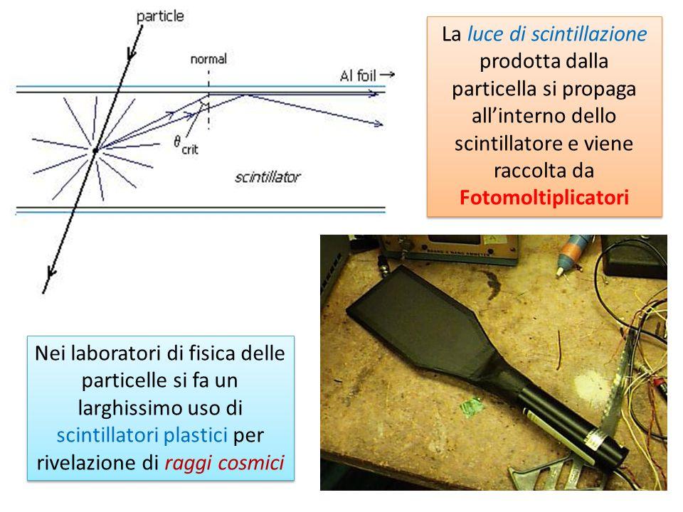 La luce di scintillazione prodotta dalla particella si propaga all'interno dello scintillatore e viene raccolta da Fotomoltiplicatori