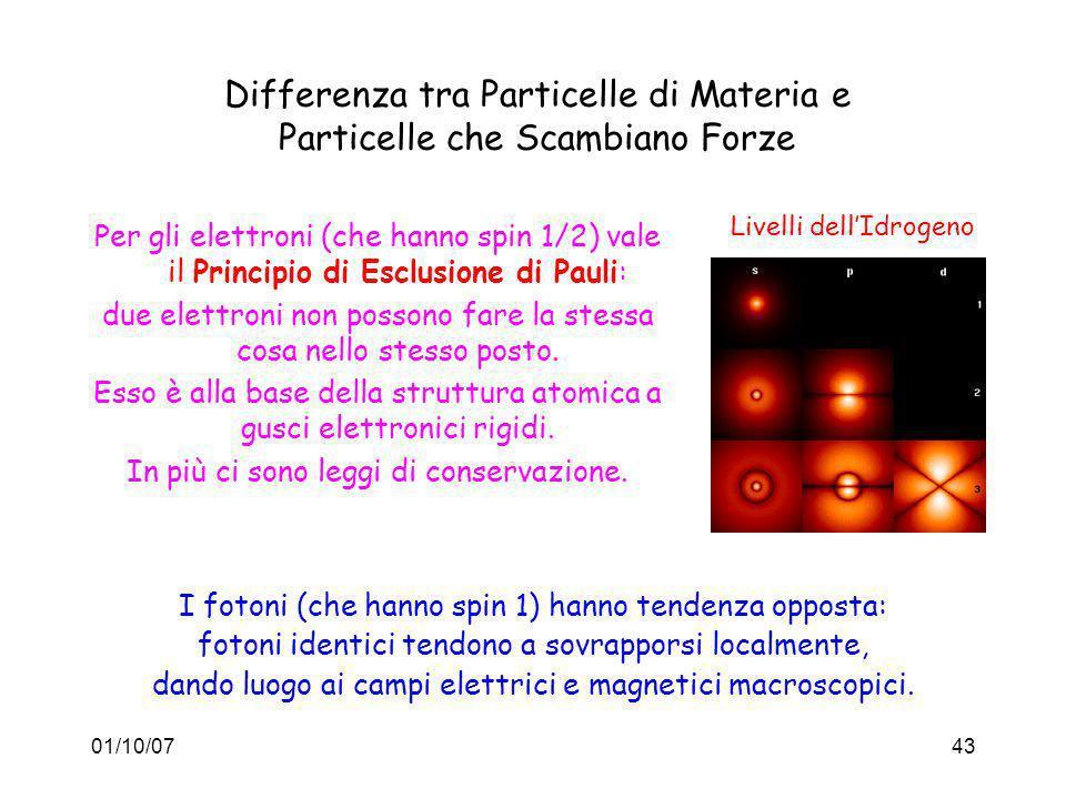 Differenza tra Particelle di Materia e Particelle che Scambiano Forze