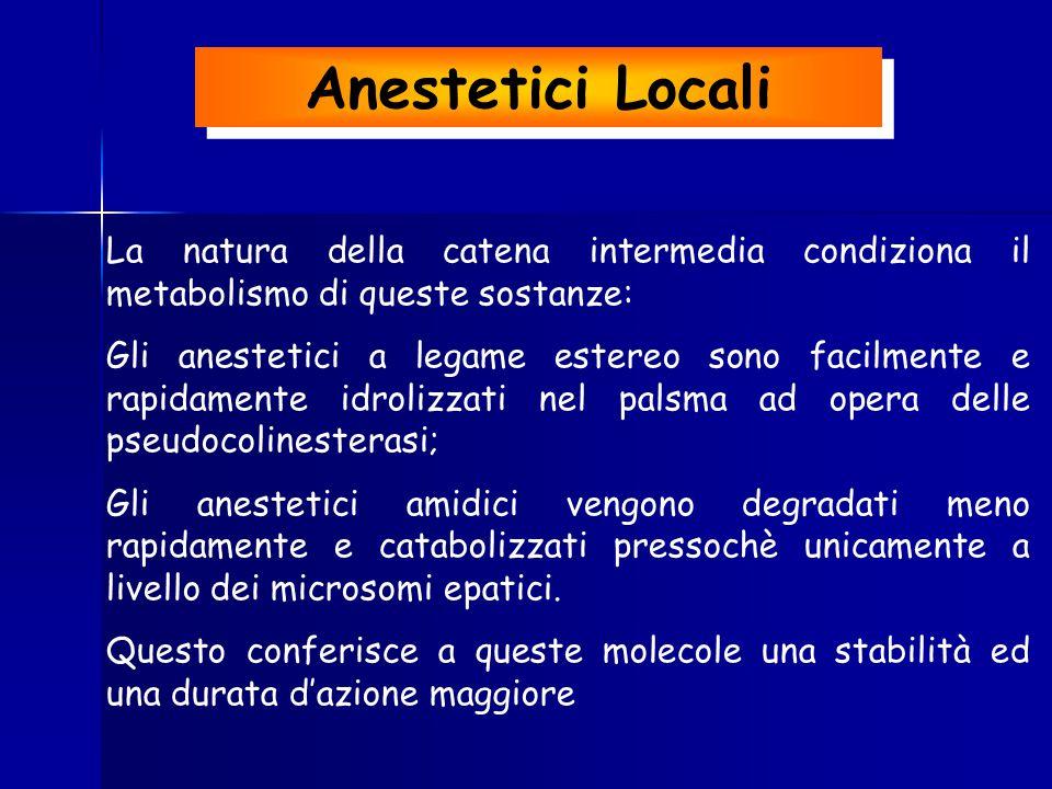 Anestetici Locali La natura della catena intermedia condiziona il metabolismo di queste sostanze: