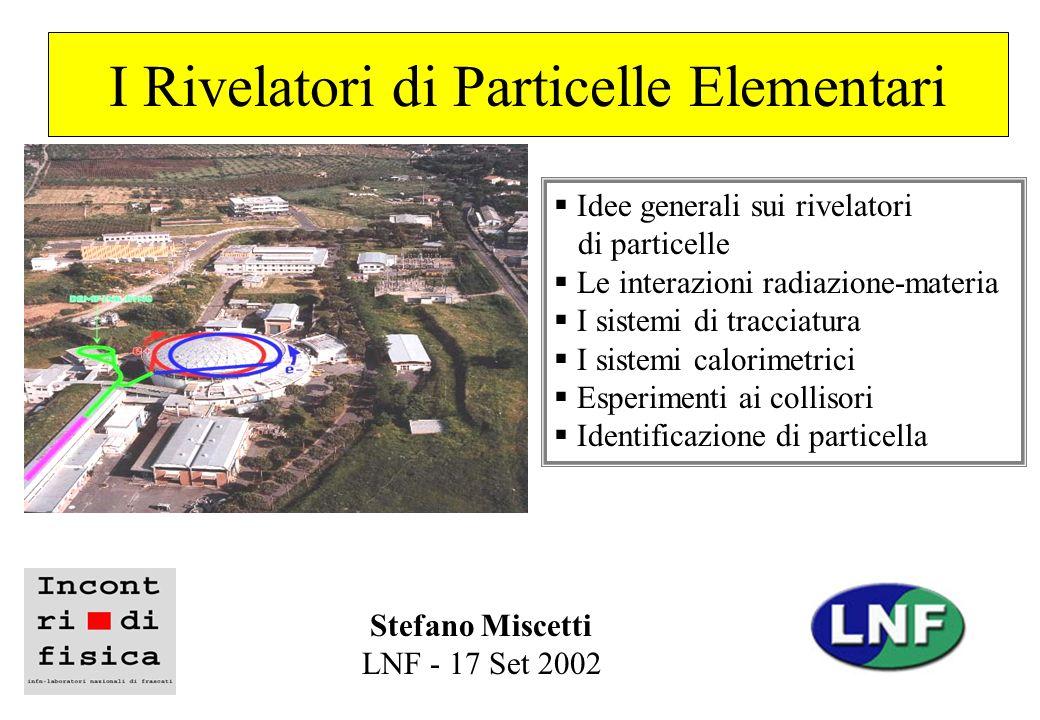 I Rivelatori di Particelle Elementari