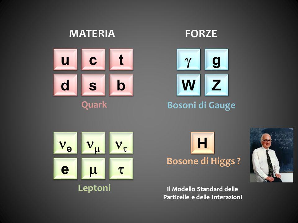 Il Modello Standard delle Particelle e delle Interazioni