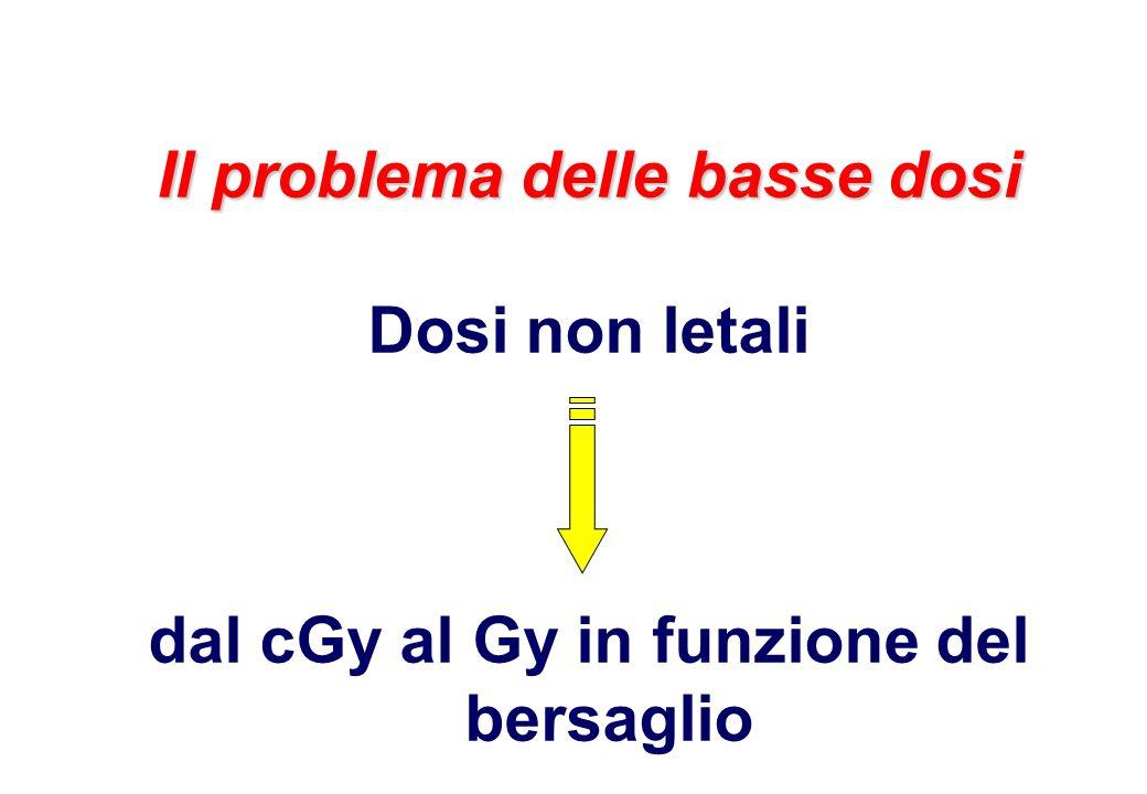 Il problema delle basse dosi dal cGy al Gy in funzione del bersaglio